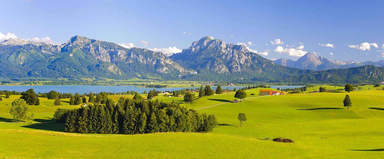 Banner im Hintergrund: Sommerlandschaft am See