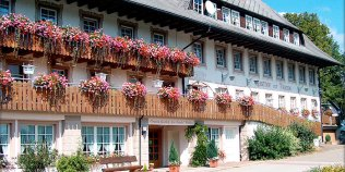 Hotel Schwarzwaldgasthof Zur Traube Waldau - Foto 1