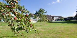 Schwarzwaldhotel Freudenstadt - Foto 1
