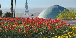 Die Stadt Baden bei Wien - Foto 1