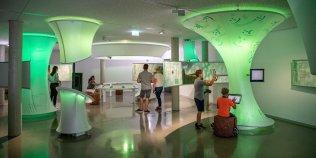 Erlebnisausstellung MOOR EXTREM / Naturschutzzentrum Wurzacher Ried - Foto 1