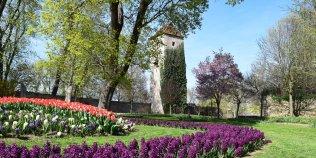Gärten Bad Langensalza - Foto 3