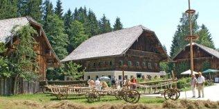 SALZBURGER FREILICHTMUSEUM - Foto 2