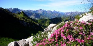 Nebelhornbahn - Foto 3