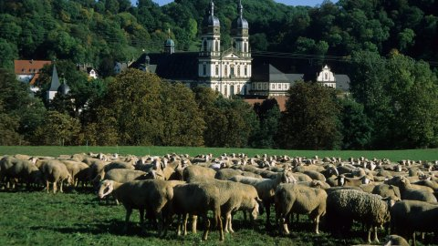 Hohenloher Land - Foto 2