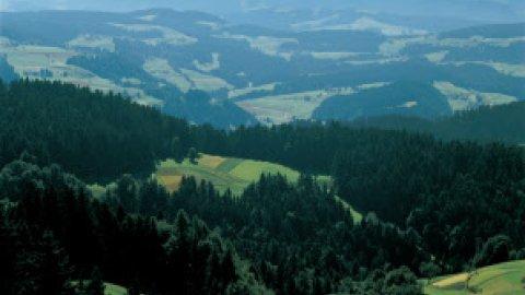 Schweizer Mittelland - Foto 1