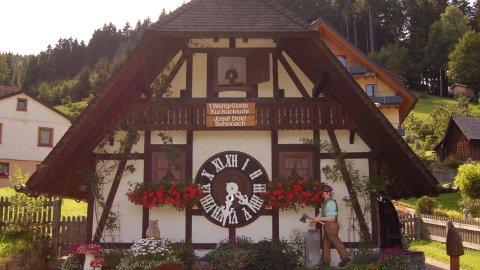 südlicher Schwarzwald - Foto 1