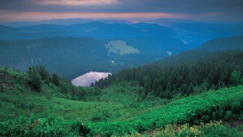 Schwarzwald - Foto 1