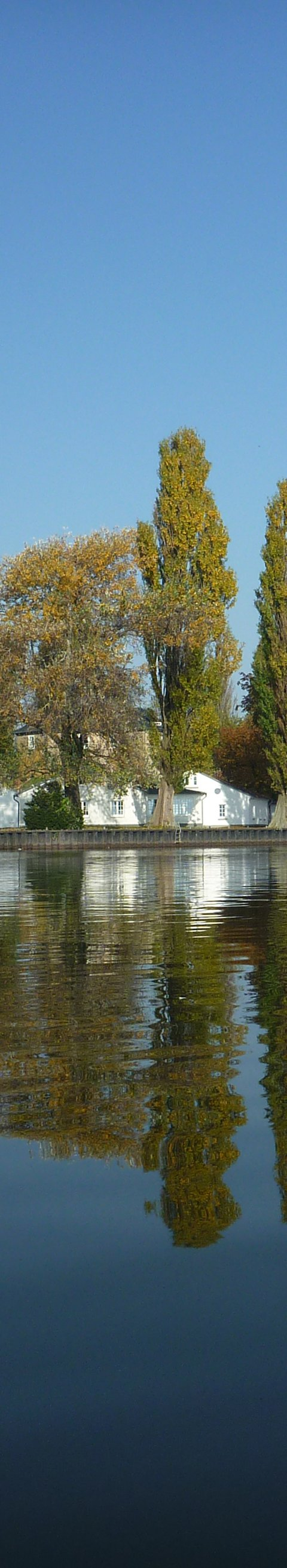Steinhuder Meer - Foto 2