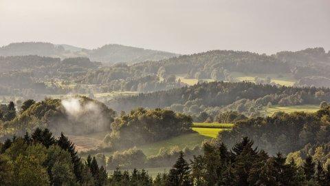 Bayerischer Wald - Foto 1