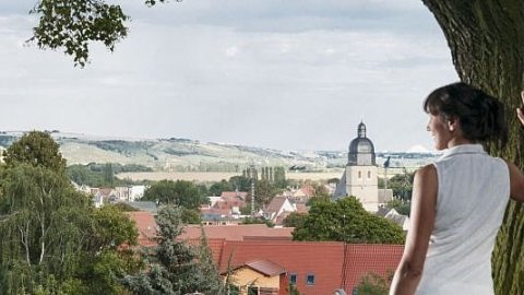 Mittlere Elbe - Foto 3