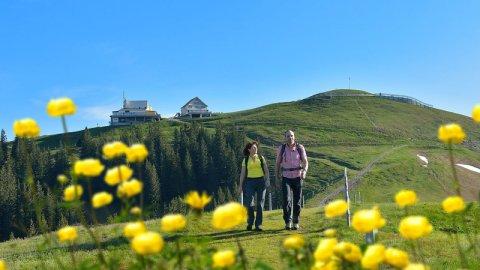 Ostschweiz - Foto 3