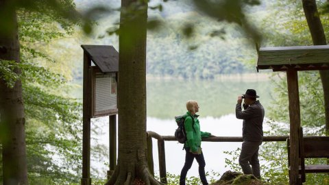 Seenland Oder-Spree - Foto 3