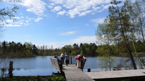 Nördlicher Bodensee - Foto 2