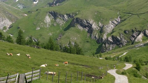 Osttirol - Foto 2