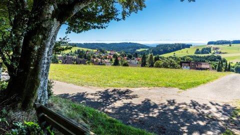 Hotzenwald - Foto 2