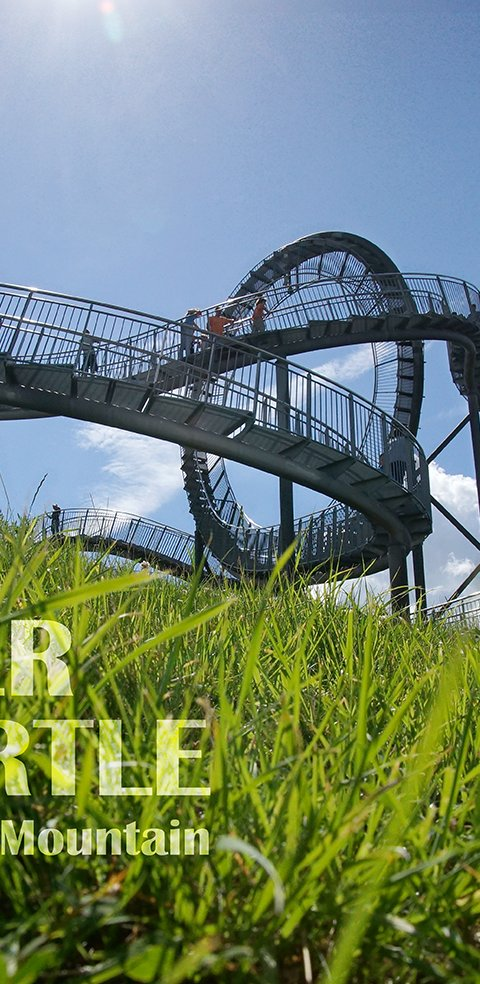 Niederrhein - Foto 2