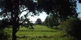 Tepe's Gasthof - Foto 3