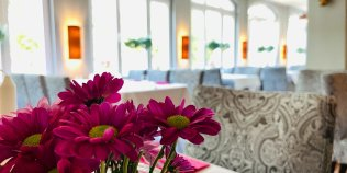 """Gasthaus & Pension """"ZU DEN LINDEN"""" RADEBEUL - Foto 3"""
